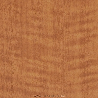 Richelieu CAW13401824 Edgebanding #W134 Cognac Curly Angire