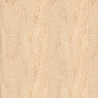 Richelieu 031316250M5 Edgebanding White Birch