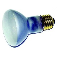 Richelieu LITB50R20 Replacement Bulb 50 Watt